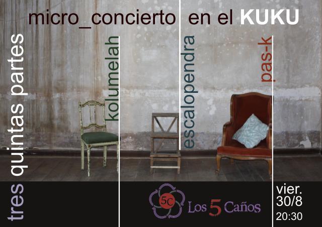 cartel 5 caños-página001