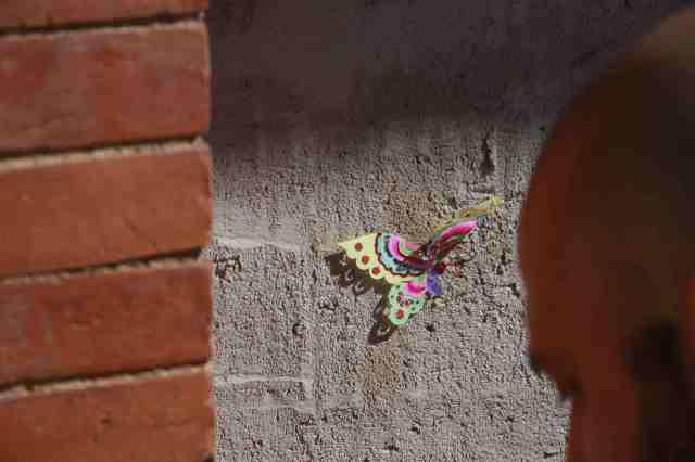 mariposa 4 4